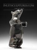"7"" Curious Dancing Bear by Kov Parr"