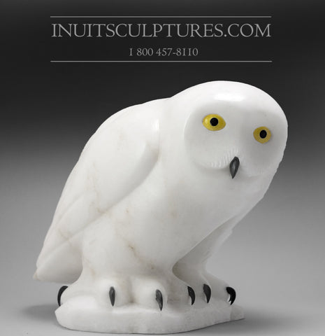 "12"" Owl by World Famous Manasie Akpaliapik"