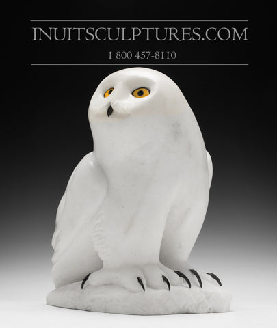"RESERVED** 15"" White Owl by Famous Manasie Akpaliapik"