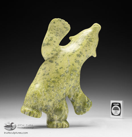 "10"" Electric Green Dancing Bear by Markosie Papigatook"