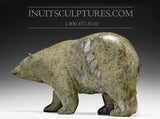 "13"" Classic Green Scenting Bear by Noah Jaw"