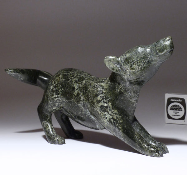 "8"" Scenting Wolf by Isaaci Etidloie"