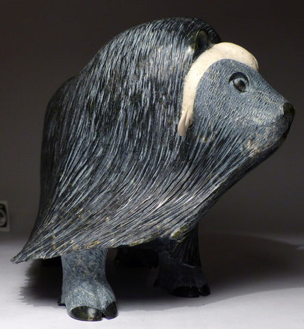 "Gorgeous 12"" Black Muskox by Lucassie Ikkidluaq"
