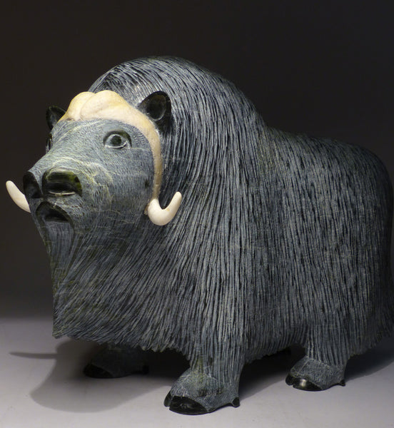"18"" Largest Ever Muskox by Lucassie Ikkidluaq - Museum Quality"