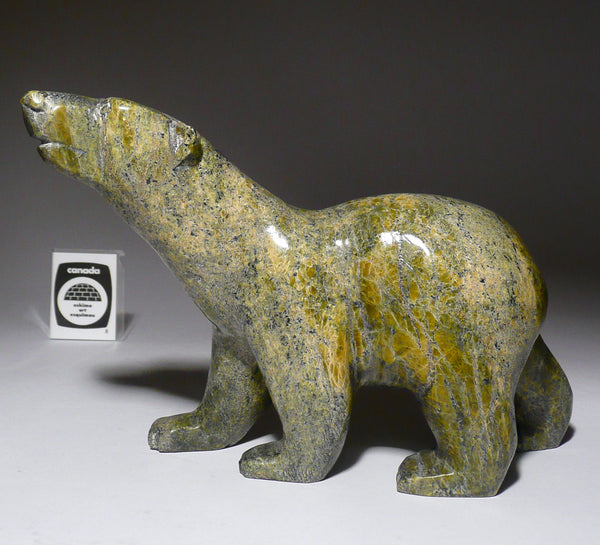 "8"" Walking Bear by Tim Pee"
