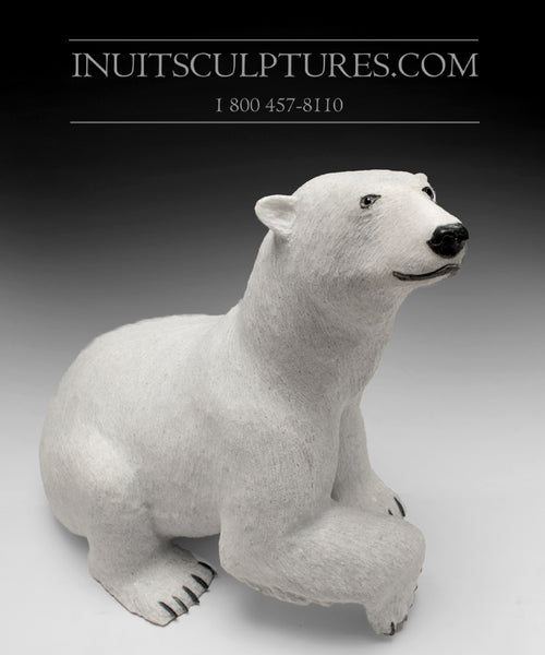 "17"" Sitting Bear by World Famous Paul Quviq Malliki"