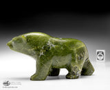"7"" Electric Green Walking Bear by Late Peter Parr (1970-2012)"