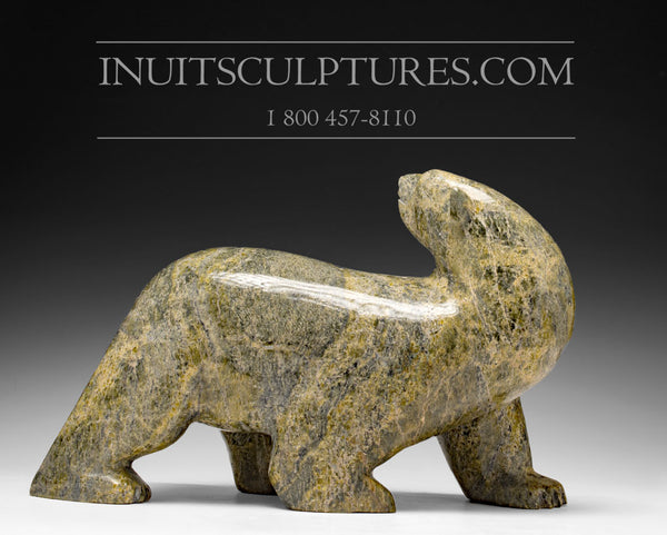 "RESERVED** Last 14"" Walking Bear by Late Peter Parr (1970-2012)"