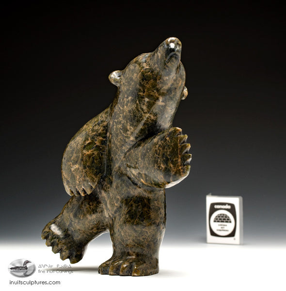 "7"" Dancing Bear by Pudlalik Shaa"