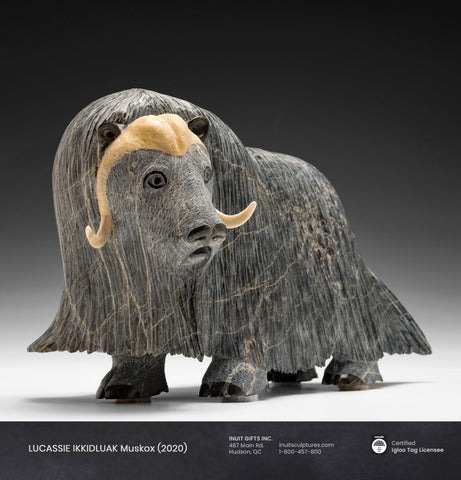 "RESERVED** 13"" Iconic Masterpiece Muskox by Lucassie Ikkidluaq"