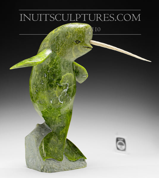 "12"" Tall, 10 lbs. Dancing Narwhal by Suati Qimirpik"