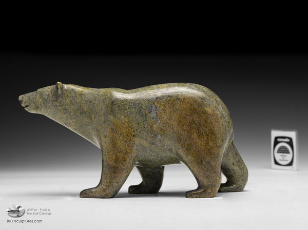 "8.5"" Handsome Walking Bear by Tim Pee"