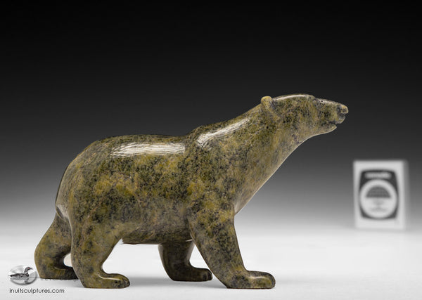 "5"" Walking Bear by Tim Pee"