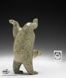 "RESERVED** 6"" Diving Bear by Tim Pee"
