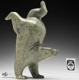 "9.5"" Pale Green Diving Bear by Tim Pee"