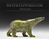 "4"" Green Walking Bear by Tim Pee"