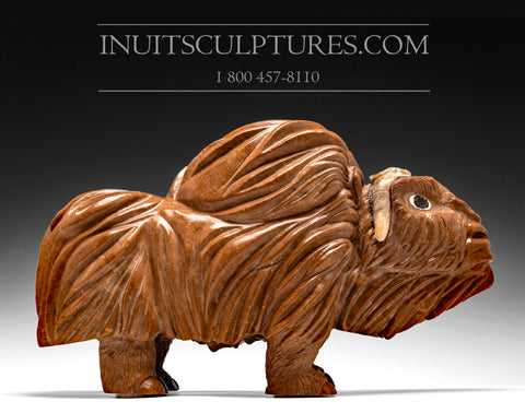"Large 20"" Light Brown Orange Muskox by Damien Iquallaq"
