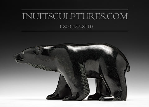 "8"" Winsome Black Bear by Master Carver Derrald Taylor"