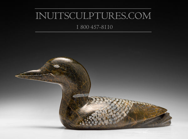 "Large 13"" Loon by Etulouie Etidloie"