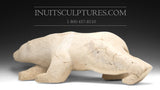 "22"" Whalebone Masterpiece Bear by Joe Jaw Ashoona"