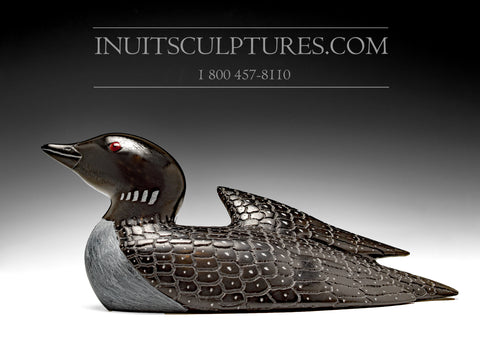 "RESERVED** 10"" Curious Loon by Jimmy Iqaluq"