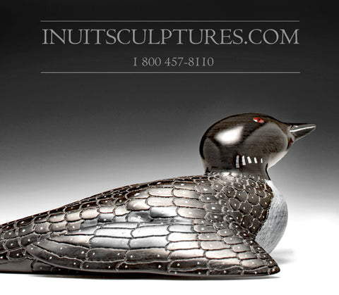 "13"" Curious Loon by Jimmy Iqaluq"
