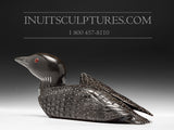 Black Loon with Inlay Eyes by Jimmy Iqaluq