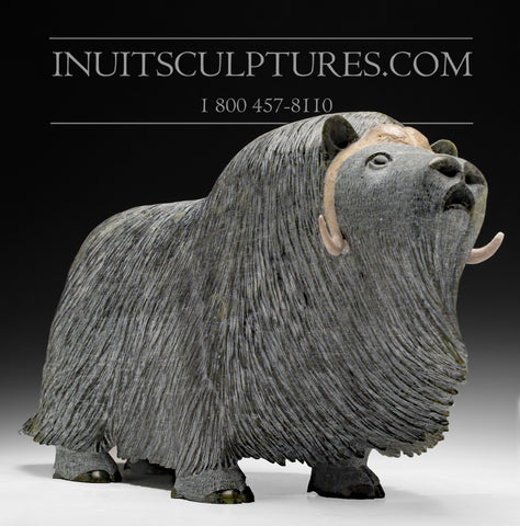 "RESERVED** 18"" Huge Masterpiece Muskox by Lucassie Ikkidluaq"