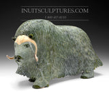 "17"" Iconic Masterpiece Green Muskox by Lucassie Ikkidluaq"
