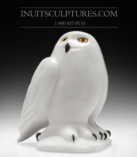 "CURATORS CHOICE - ON SALE!** 10"" Pure White Owl by Famous Manasie Akpaliapik"