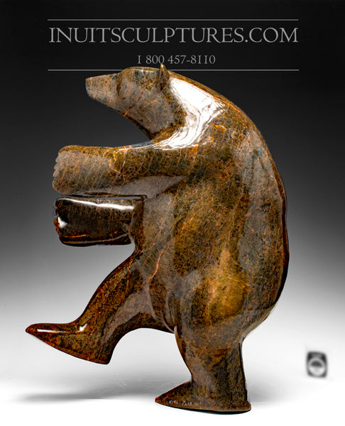"RESERVED** 20"" Striking Brown Dancing Bear by Nuna Parr"