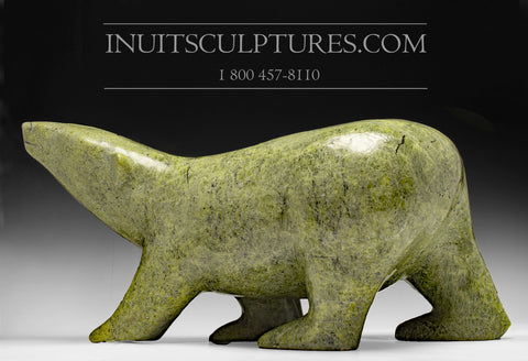 "RESERVED** 24"" 125 lbs Rare Arching Back Masterpiece Green Nuna Parr Gorgeous Walking Bear"