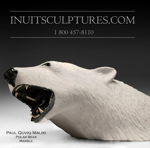 "30"" - 180 lbs Polar Bear by World Famous Paul Quviq Malliki"