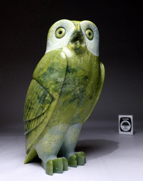"Apple Green 8"" Owl by Pits Qimirpik"