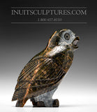 "5.5"" Gorgeous Brown Owl by Pitseolak (Pits) Qimirpik"