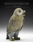 "8"" Rare Pale Yellow Owl by Pits Qimirpik"