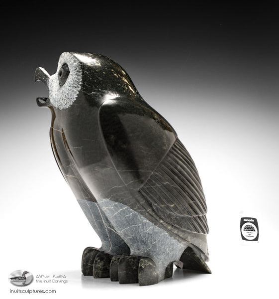 "Huge 12"" Owl by Pits Qimirpik"