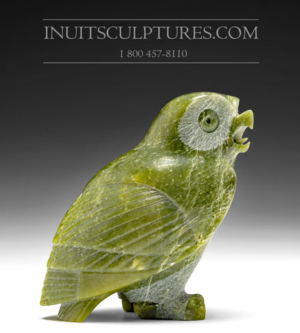 "6"" Apple Green Owl by Pitseolak (Pits) Qimirpik"