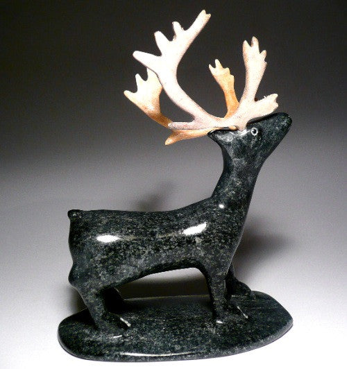 Caribou by Sheokjuk Carriere from Iqaluit