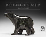 "**RESERVED** 8.25"" Black Walking Bear by Tim Pee"