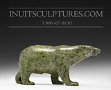 "4.5"" Green Walking Bear by Tim Pee"