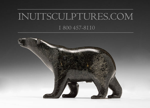"4.5"" Black Walking Bear by Tim Pee"
