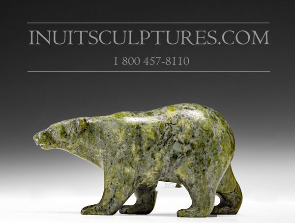 "4.5"" Curious Walking Bear by Tim Pee"