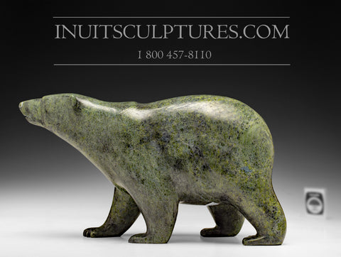 "13"" Classic Green Walking Bear by Tim Pee"