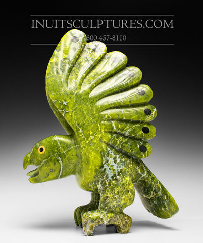 "Last Piece from the ""Covid Colection"" - 14"" Electric Green Bird Spirit by Toonoo Sharky"