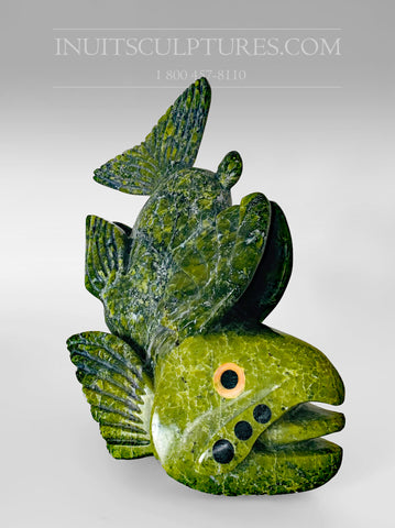 "10"" ""Covid Collection"" Apple Green Fish Spirit with Orange Peko eyes by Toonoo Sharky"