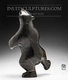"14"" Striking Black Two Way Dancing Bear by Tuk Nuna"