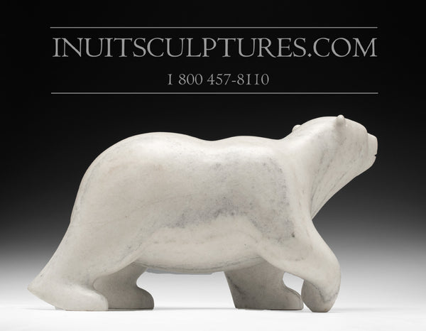 "16"" Striking Marble Walking Bear by Tuk Nuna"
