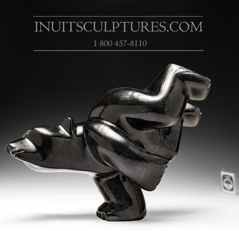 "13"" Majestic Black Marble Diving Bear"