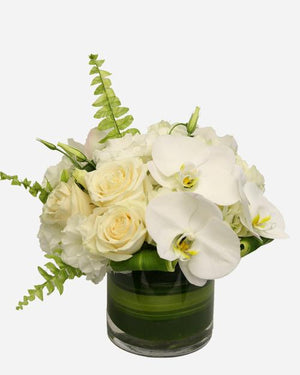 Elegant Bliss - Fresh Blooms Flowers